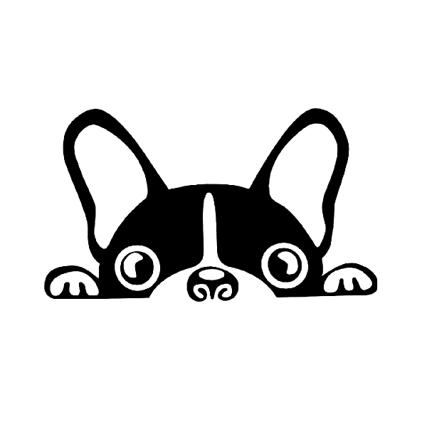 Peekin Pug Dog Decal